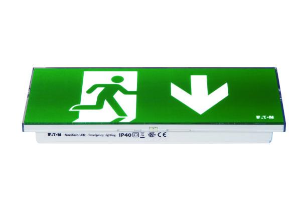 NexiTech LED Door